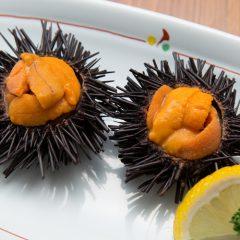 Raw Sea Urchin for 1 person: ¥1,080