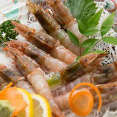 Mantis Shrimp Sashimi: ¥1,500