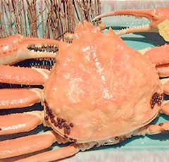 Echizen Crab   Medium size: around 0.6 -0.7kg ¥13,000