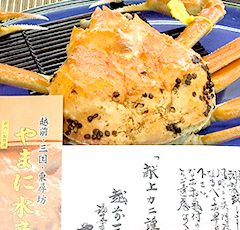 Echizen Crab  Class of crab presented to the Imperial Family   Large: around 1.3 – 1.4kg ¥43,200