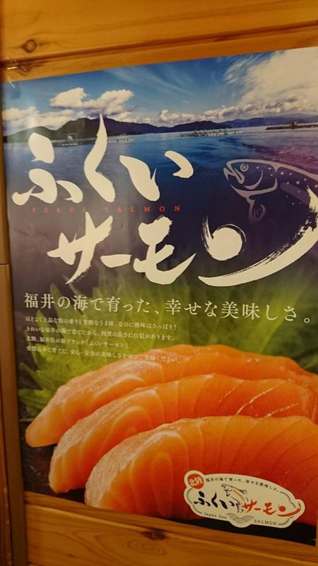 salmon-01-up